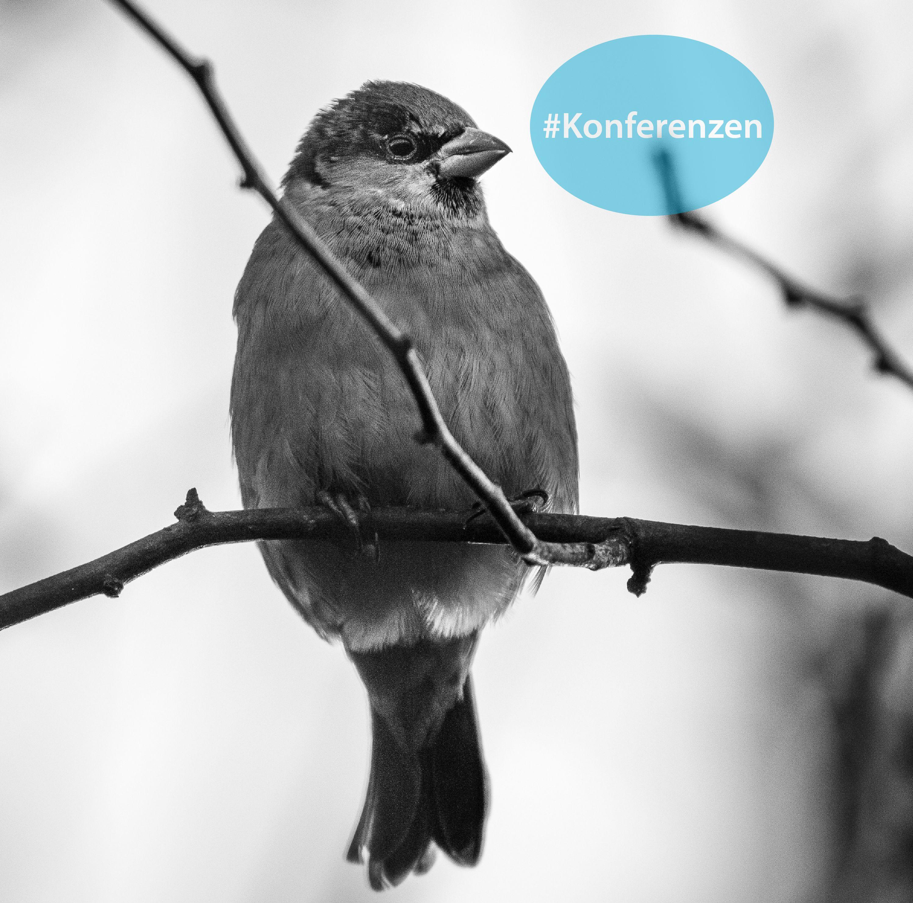 TwitterTechcomm